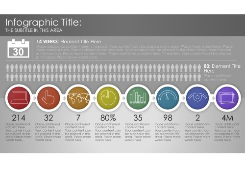 Infographic 9